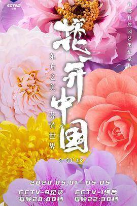 花开中国(粤语)